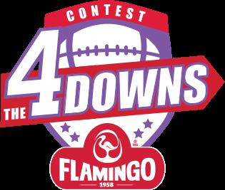 logo contest 4 downs flamingo